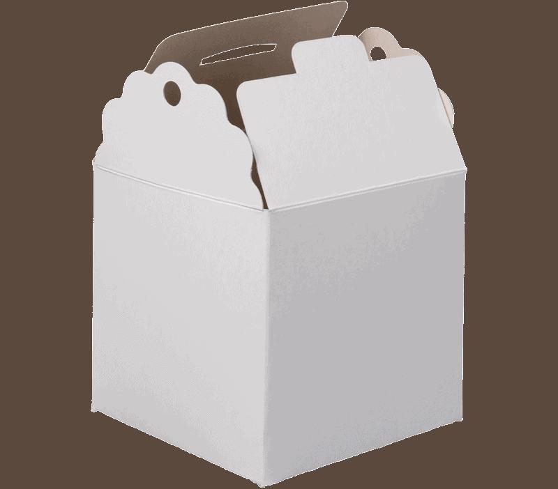 箱のタネサンプル箱